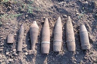 ВДнепропетровской области грибник отыскал 27 мин