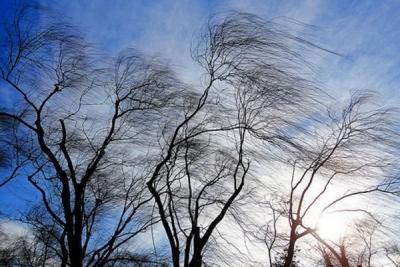 Синоптики предупреждают осильных порывах ветра вКиеве